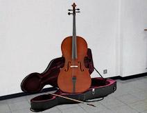 Spedizione violoncello